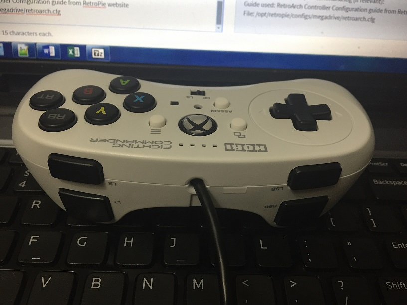 Input Remapping Issue-Hori Fighting Commander Controller